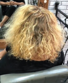 Larisa Love grey hair challenge client before