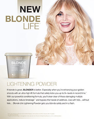 blonde life lightening powder fact sheet pdf cover