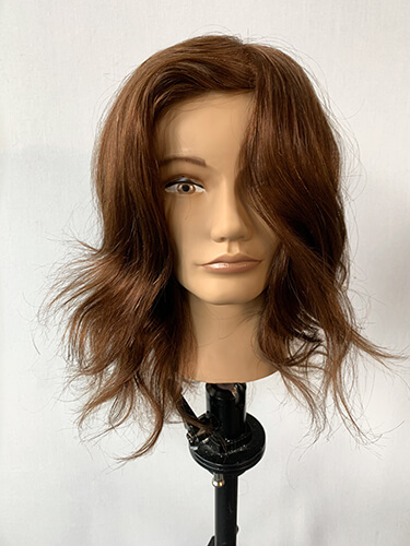 Mannequin hair with before highlights