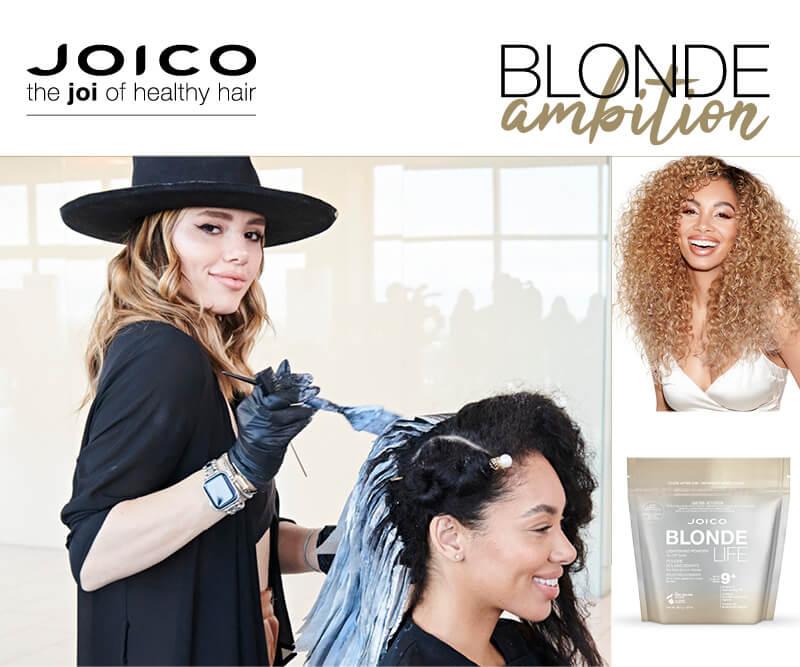 Larisa Love coloring clients hair