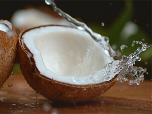 coconut with water inside